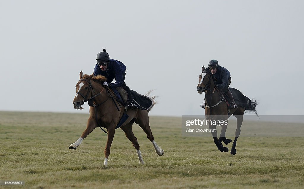 Andrew Tinkler riding I'm Fraam Govan (L) owned by Sir Alex Ferguson on Lambourn gallops on March 04, 2013 in Lambourn, England.