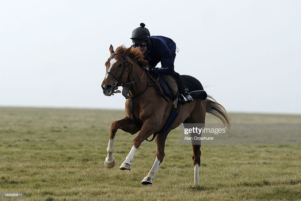 Andrew Tinkler riding I'm Fraam Govan owned by Sir Alex Ferguson on Lambourn gallops on March 04, 2013 in Lambourn, England.