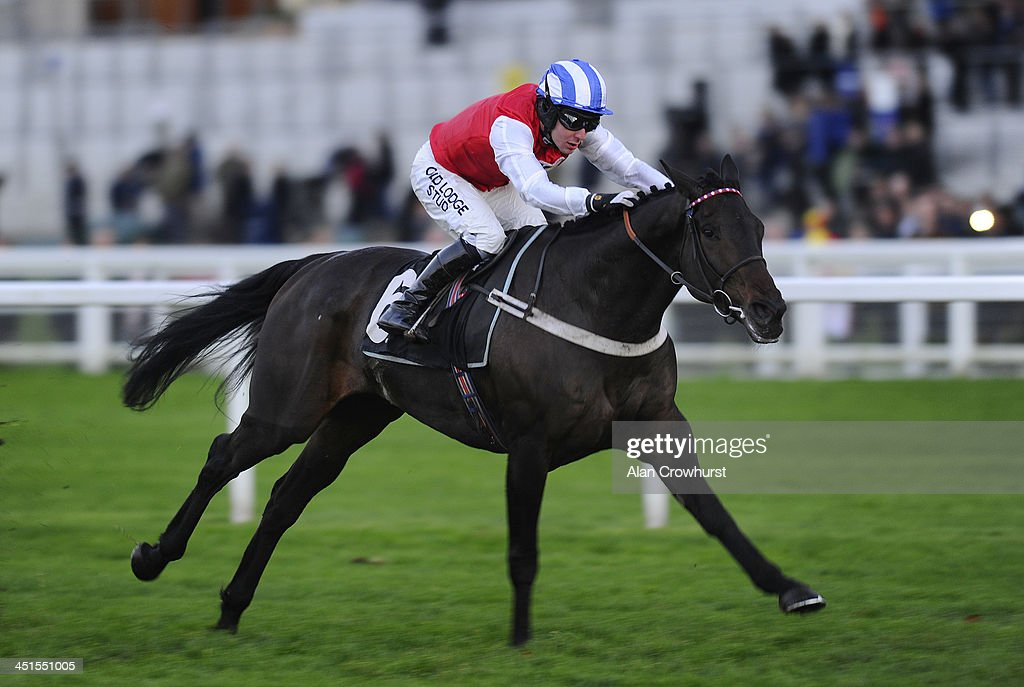 Andrew Tinkler riding Josses Hill win The Harriet Roberts Memorial Standatd Open National Hunt Flat Race at Ascot racecourse on November 23, 2013 in Ascot, England.