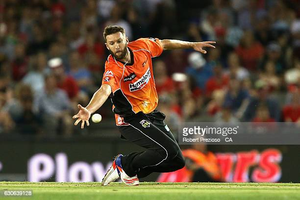 Andrew Tye of the Scorchers drops a catch during the Big Bash League match between the Melbourne Renegades and Perth Scorchers at Etihad Stadium on...