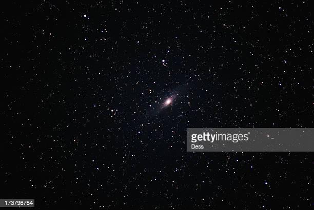 Andromeda's Neighborhood