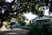 Andy and Denise Powell of Carpinteria kept an old 'fuerte' avocado tree as a centerpiece in their front yard Their children grew up playing in the...