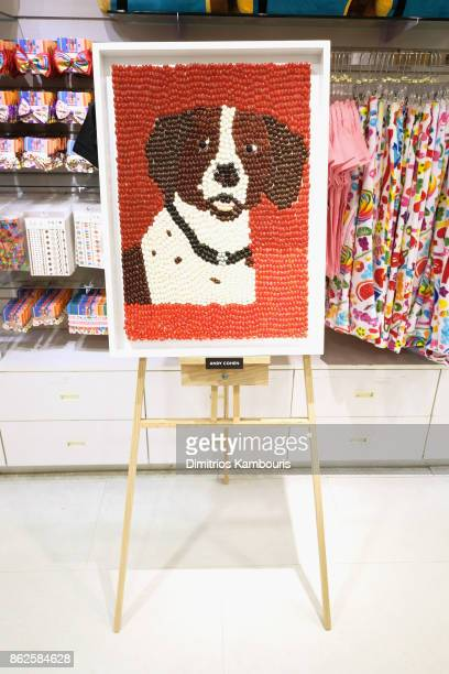 Andy Cohen's artwork on display as Dylan Lauren celebrates the Sweet 16 of Dylan's Candy Bar on October 17 2017 in New York City