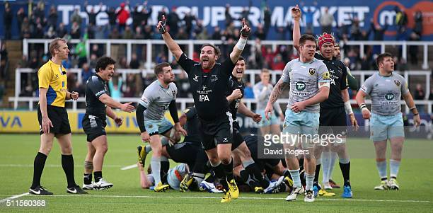 Andy Goode the Newcastle Falcons flyhalf celebrates their victory at the final whistle during the Aviva Premiership match between Newcastle Falcons...