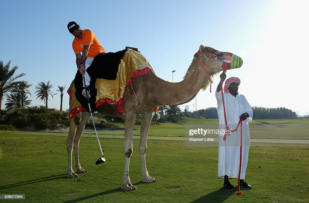 Andy Sullivan of England takes part in the Worlds first camel golf after the Gary Player Invitational Abu Dhabi at Saadiyat Beach Golf Club on February 8, 2016 in Abu Dhabi, United Arab Emirates.