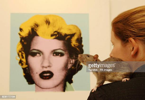 Andy Warhol's Marilyn Monroe print recontextualised as 'Kate' at a preview for the first official exhibition by graffiti artist Banksy where 164 rats...