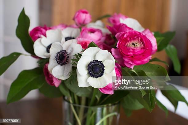 Anemone and ranunculus flowers in vase