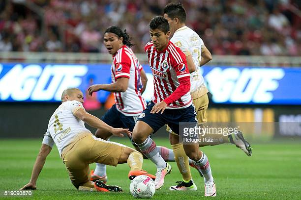 Angel Saldivar of Chivas fights for the ball with Dario Verón of Pumas during the 12th round match between Chivas and Pumas UNAM as part of the...