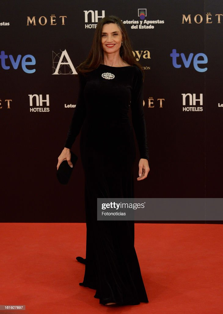 Angela Molina attends Goya Cinema Awards 2013 at Centro de Congresos Principe Felipe on February 17, 2013 in Madrid, Spain.