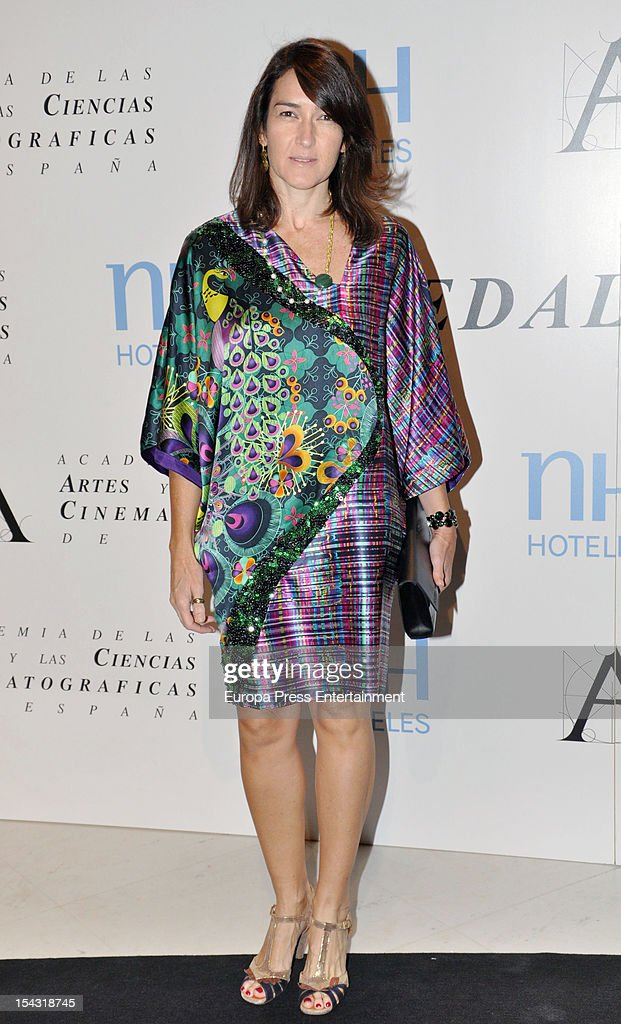 Angeles Gonzalez Sinde attends Gold Medal Award photocall on October 17 2012 in Madrid Spain