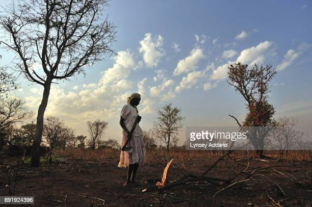 Angelica Asienza chops down trees at dawn on the land that used to be hers before she fled to Lididi Uganda 20 years prior because of fighting in...