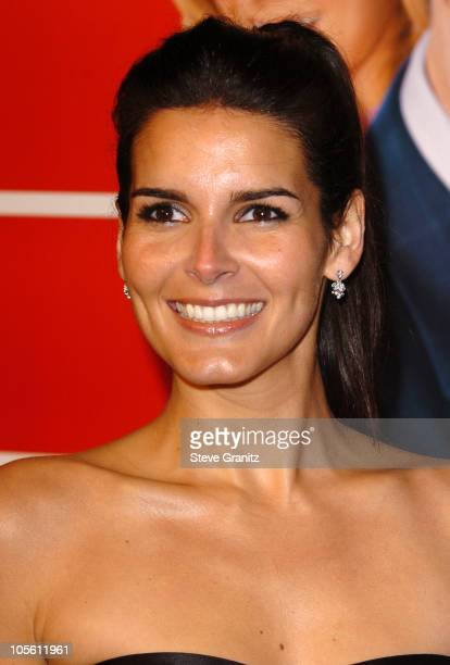 Angie Harmon during 'Fun with Dick and Jane' Los Angeles Premiere Arrivals at Mann Village Theater in Westwood California United States