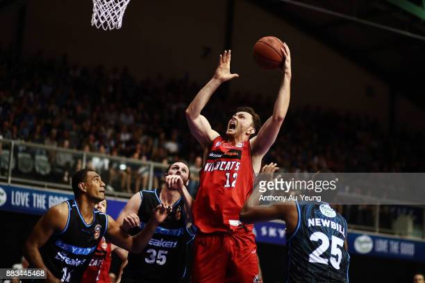 Angus Brandt of the Wildcats puts up a shot during the round eight NBL match between the New Zealand Breakers and the Perth Wildcats at North Shore...