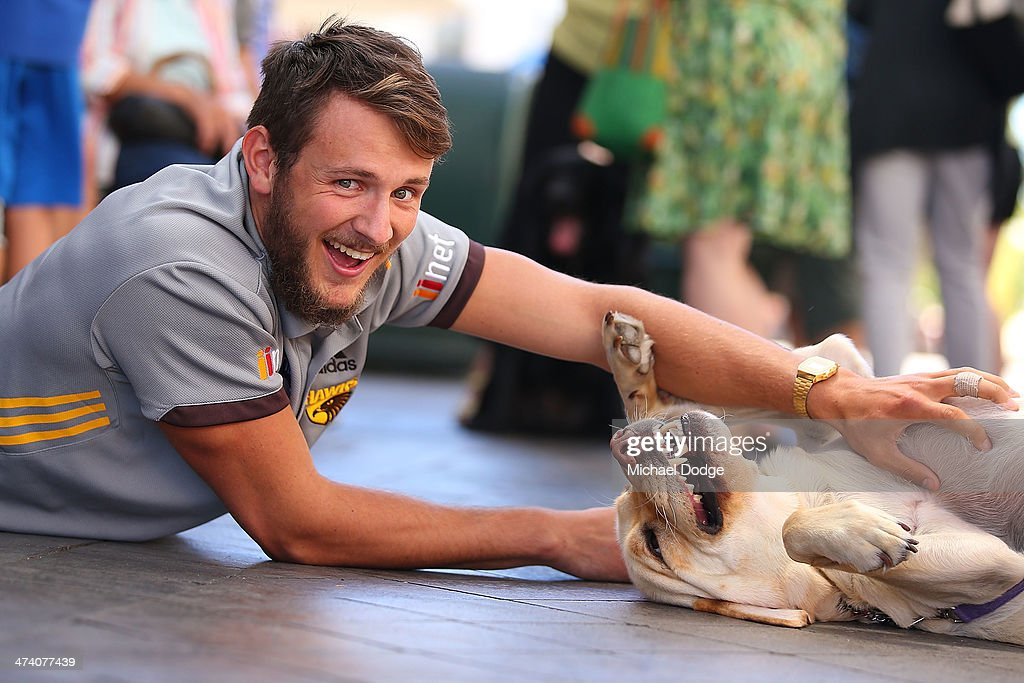 Angus Litherland plays with a Guide dog for the Guide Dogs Tasmania 'Take the Lead' campaign launch during the Hawthorn Hawks AFL Community Camp on February 22, 2014 in Launceston, Australia.