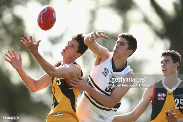 Angus Paterson of the Dandenong Stingrays contests the ball during the round 13 TAC Cup match between Dandenong and Northern Knights at Shepley Oval...