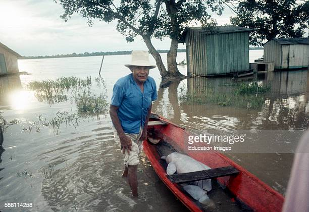 Animal dealers with baby dolphin Leticia Colombian Amazon Inia geoffrensis