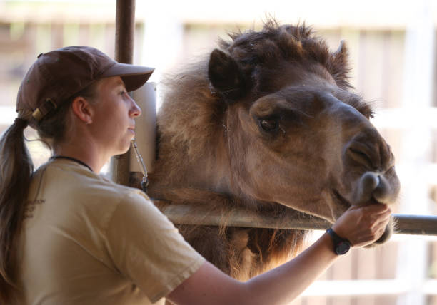 CA: Oakland Zoo Nears Bankruptcy As Coronavirus Forces Extended Closure