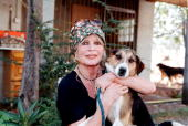 Animal rights activist Brigitte Bardot visits her dog refuge 'The Nice Dogs' of Carnoules on October 7 2001 in Paris France