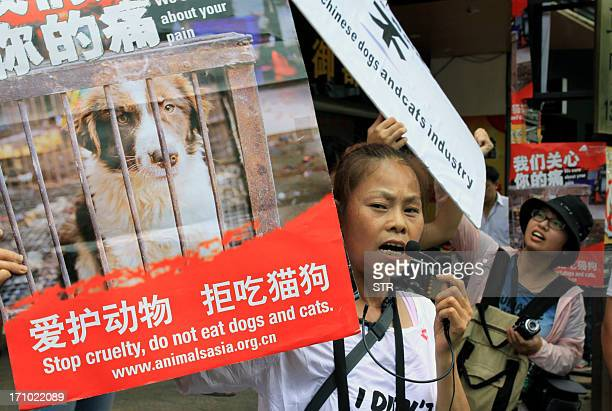 Animal rights activists protest against eating dog meat outside a dog meat restaurants in Yulin southwest China's Guangxi province on June 21 2013...