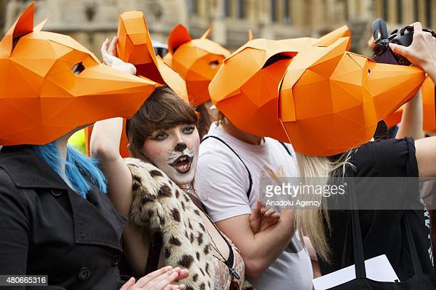 Animal rights campaigners protesting against government plans to bring back fox hunting ahead of the vote in the House of Commons on July 14 2015...