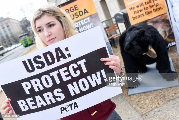 Animal rights supporters alongside 'Bernard' PETA's sevenfoottall robotic bear voiced by Oscarwinning actor Casey Affleck call on the USDA to protect...