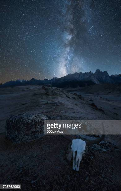 Animal skull in mountains and starry clear sky, Sichuan, China
