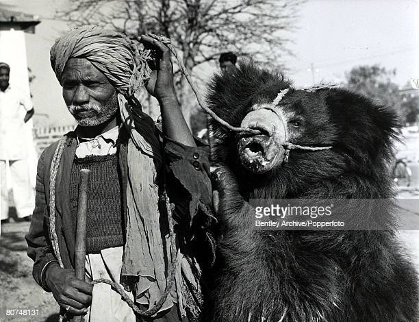 22nd January 1961 India A performing bear tethered through it's nose pictured with it's master