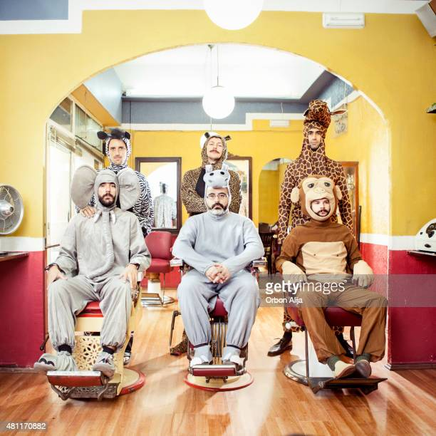 Animals in a Hair Salon