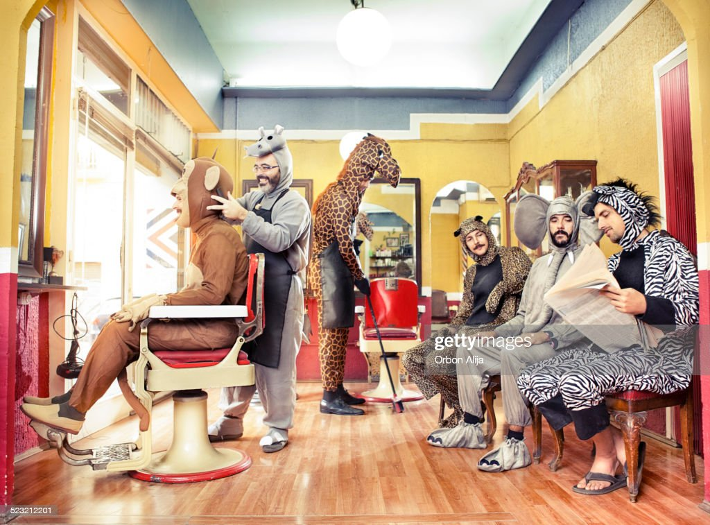 Animals in a Hair Salon : Stock Photo