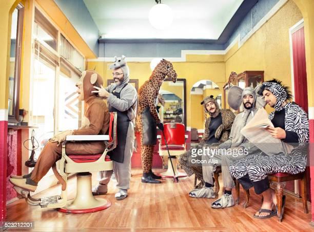 Animales en una peluquería