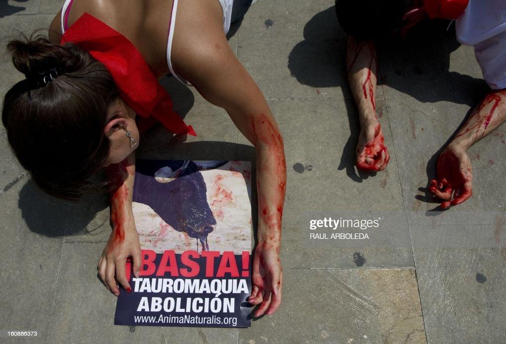 AnimaNaturalis animal protection organization activists protest against bullfighting in Medellin, Antioquia department, Colombia on February 7, 2013. AFP PHOTO/Raul ARBOLEDA