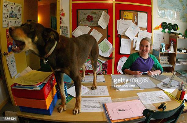 Anna Jackson is interrupted by the family dog during her reading lesson on their property three hours from Broken Hill on October 24 2002 in New...