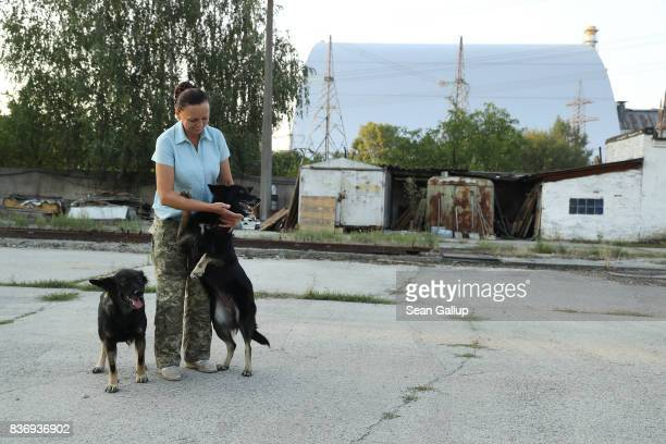 Anna Vlasinko greets two stray dogs she has named Alfa and Zuzka at the security post where she works opposite the new giant enclosure built over the...