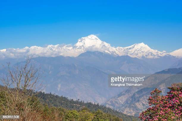 Annapurna Massif, Mountain range in Nepal.