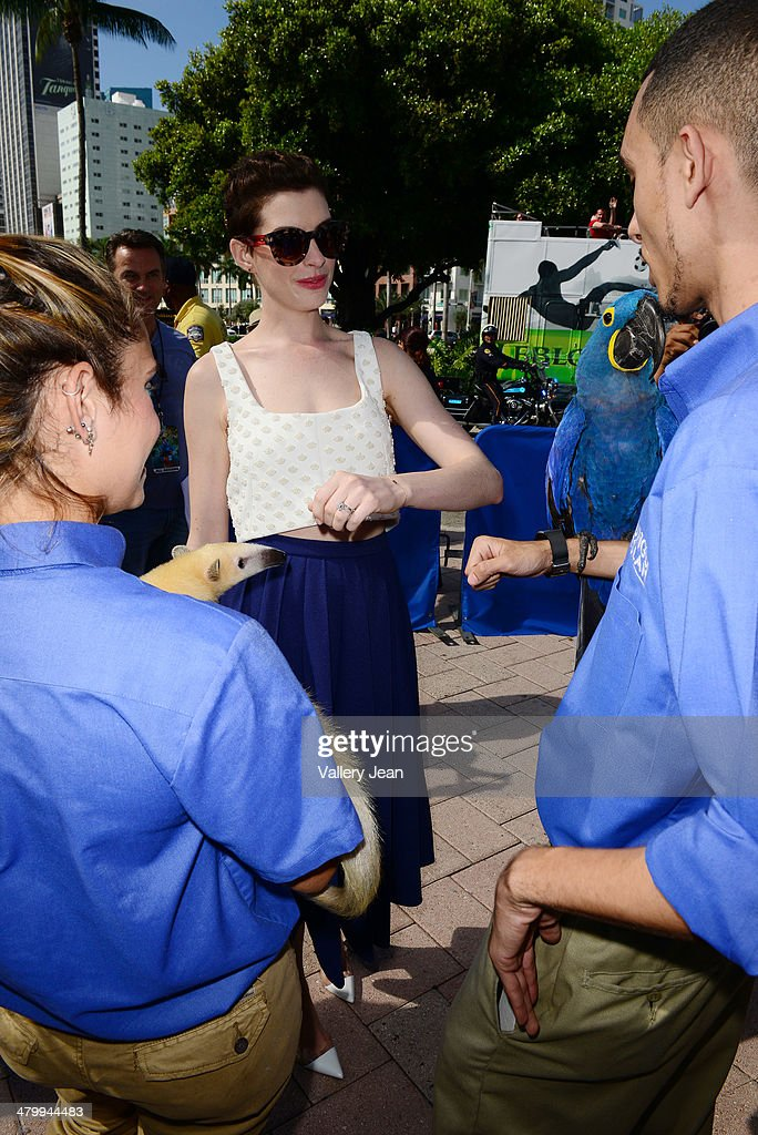 Anne Hathaway attends Miami Walk Of Fame unveiling at Bayside Marketplace on March 21, 2014 in Miami, Florida.