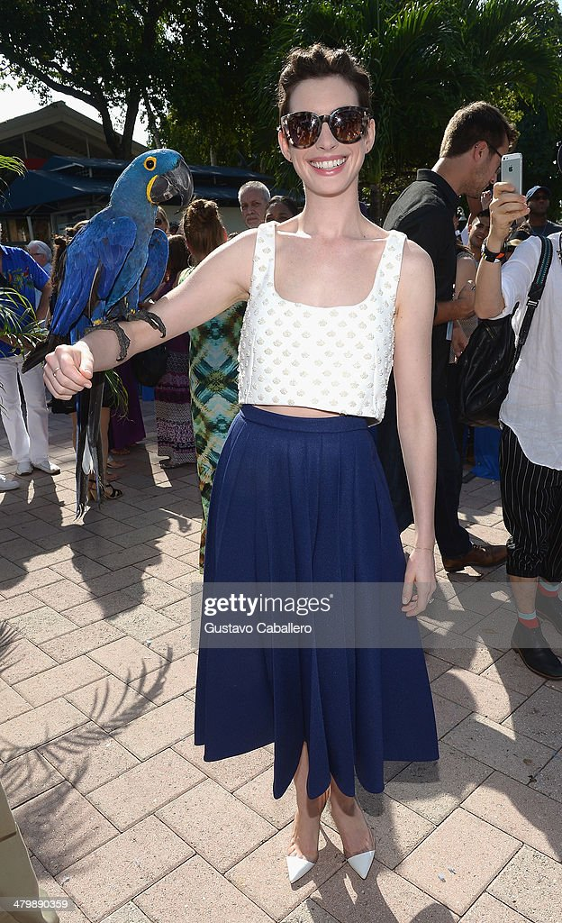 Anne Hathaway poses with a bird during the Miami Walk Of Fame inauguration at Bayside Marketplace on March 21, 2014 in Miami, Florida.