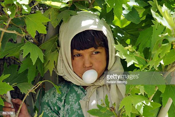 Annisa blows a bubble with her chewing gum as she rests against an oak tree July 3 2002 in the village of Istalif north of Kabul Afghanistan The...