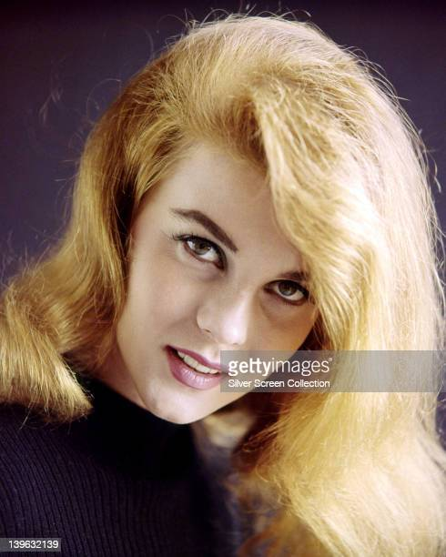 AnnMargret SwedishAmerican actress wearing a purple knitted jumper in a studio portrait against a purple background circa 1965