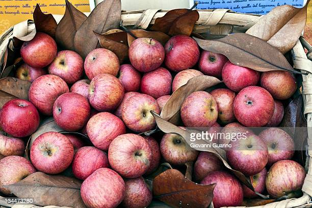 Annurca, local type of apple, in a basket, Naples, Campania, Italy, Europe