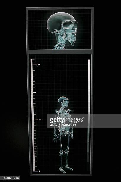 Another attraction of the Paleosite interactive center the body scanner which will submit a Neanderthal skeleton matching the data visitors Visitors'...