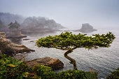 Cape Flattery is the northwesternmost point of the contiguous United States. It is in Washington State on the Olympic Peninsula, where the Strait of Juan de Fuca joins the Pacific Ocean. I Cape Flatte