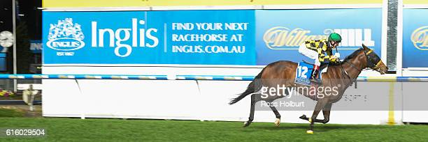 Another Diamond ridden by Jason Lyon wins Inglis 55 Second Challenge Heat 3 at Moonee Valley Racecourse on October 21 2016 in Moonee Ponds Australia