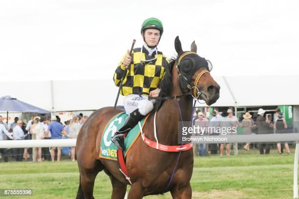 Another Diamond ridden by Thomas Stockdale returns after the XXXX Gold BM70 Handicap at Dunkeld Racecourse on November 18 2017 in Dunkeld Australia