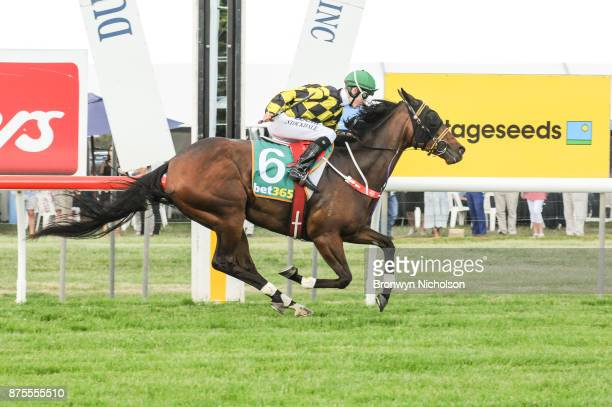 Another Diamond ridden by Thomas Stockdale wins the XXXX Gold BM70 Handicap at Dunkeld Racecourse on November 18 2017 in Dunkeld Australia