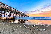 Watching the sun set in  Newport Beach, California