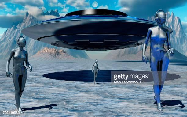 Antarctic Visitors