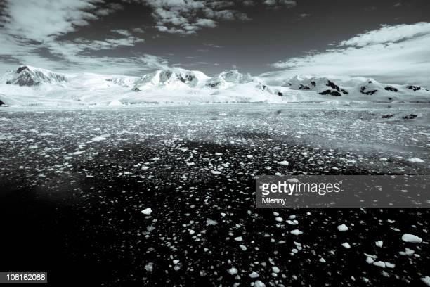 Antarktis schwarz und weiß