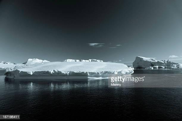Antarctique Icebergs BW