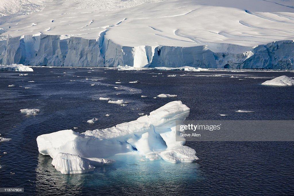 Antarctica : Stock Photo