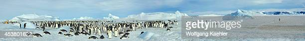 Antarctica Weddell Sea Snow Hill Island Panorama Photo Of Tourists At Emperor Penguin Colony Aptenodytes forsteri